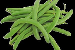 green-2505076_1920