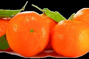 orange-2278710_1920